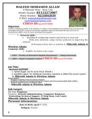Waleed Allam (CV).docx